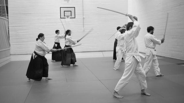 bsi-aikido-8907.jpg